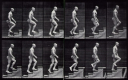 http://www.forum-mp3.net/images/article_compression/Muybridge_ascending_stairs.jpg